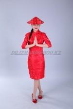 02449 Китайский женский национальный костюм