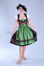 02300 Немецкий национальный женский костюм