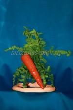 1078. Морковь