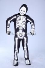 03084 Скелет