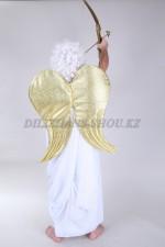 01725 Золотые крылья купидона