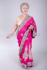 02381 Индийское сари