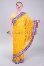 02395 Индийское сари