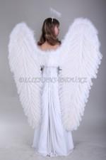 1315. Большие крылья для ангелов