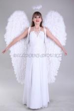 00076 Ангел с большими крыльями
