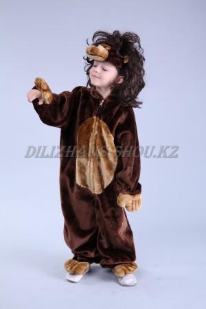 Детские костюмы: животные, звери, птицы, насекомые