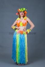 02509 Гавайский женский костюм