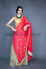 02331 Индийский костюм