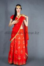 02334 Индийский костюм