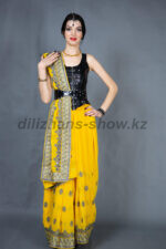02337 Индийский костюм