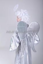 00088 Крылья ангела серебристые