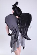 1341. Чёрный ангел