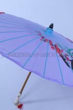 1838 Японский зонт