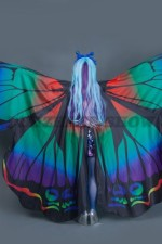 02553 Бабочка Морфо (2)